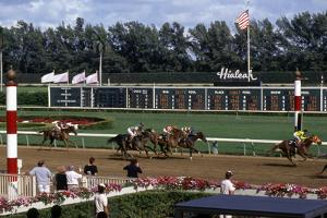 Hialeah Park Race Track, C.1985