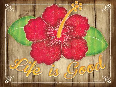 https://imgc.allpostersimages.com/img/posters/hibiscus_u-L-PT1G1V0.jpg?p=0