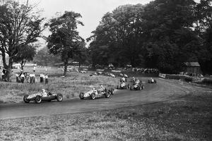 Daily Herald Race Meeting 1955 by Hicklin Barham and