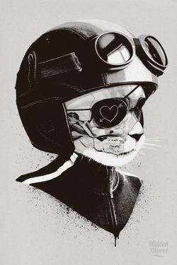 Cat Racer by Hidden Moves