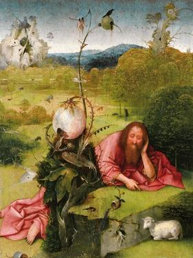 Saint John the Baptist in the Desert, Late 15th C by Hieronymus Bosch