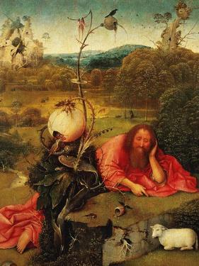 Saint John the Baptist In the Wilderness, Ca. 1489 by Hieronymus Bosch
