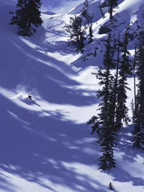 High Angle View of a Man Skiing