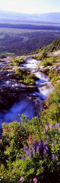 High Angle View of a Waterfall, Ribbon Falls, Yosemite National Park, California, USA