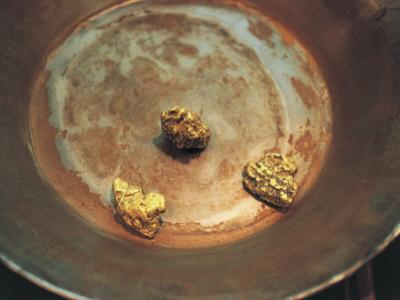 High Angle View of Nuggets of Gold on a Pan, Dawson, Usa