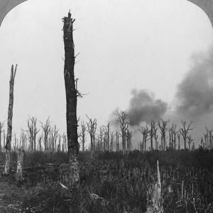 High Explosive Shells Bursting in Mametz Wood, France, World War I, 1916