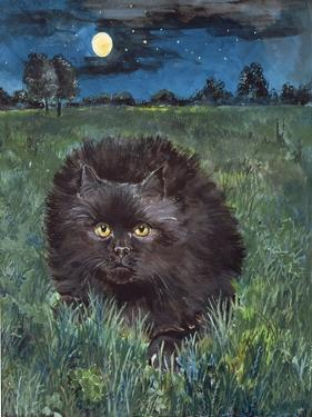 The Cat and the Moon by Hilary Jones