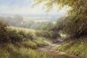 Country Path by Hilary Scoffield