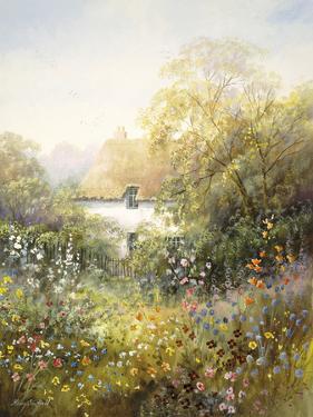 Summer Glory by Hilary Scoffield
