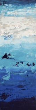 Blue Skies - Canvas 2 by Hilary Winfield