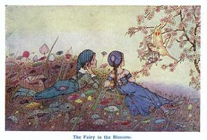 The Fairy in the Blossom by Hilda T. Miller