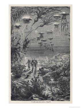 20,000 Leagues Under the Sea: The Divers on the Sea-Bed by Hildebrand