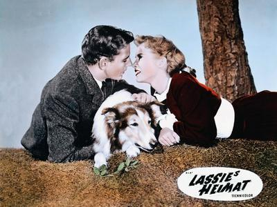 https://imgc.allpostersimages.com/img/posters/hills-of-lassie-1948-directed-of-fred-m-wilcox-tom-drake-and-janet-leigh-photo_u-L-Q1C3XH70.jpg?artPerspective=n