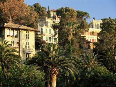 https://imgc.allpostersimages.com/img/posters/hillside-mansions-amongst-palms-santa-margherita-ligure-portofino-peninsula-liguria-italy_u-L-P1TH690.jpg?p=0