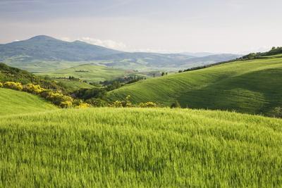 https://imgc.allpostersimages.com/img/posters/hilly-landscape-val-d-orcia_u-L-PNFW510.jpg?artPerspective=n