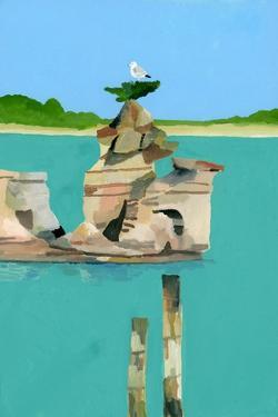 Seagull resting by Hiroyuki Izutsu