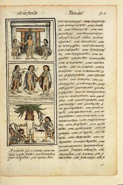 Historia General De Las Cosas De Nueva Espaa Aztec Chronicles