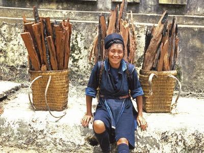 https://imgc.allpostersimages.com/img/posters/hmong-woman-in-sapa-region-north-vietnam_u-L-Q1GYMXV0.jpg?artPerspective=n