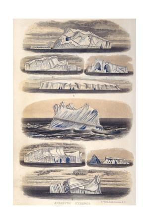 Challenger Icebergs