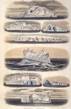 Challenger Icebergs by HN Moseley