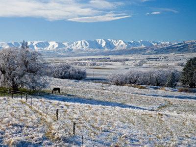 https://imgc.allpostersimages.com/img/posters/hoar-frost-and-farmland-near-poolburn-central-otago-south-island-new-zealand_u-L-P2TD3M0.jpg?artPerspective=n
