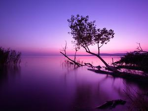 Sunset Lake. this Photo Make in Hungary. Sunset Whit Balaton by hofhauser