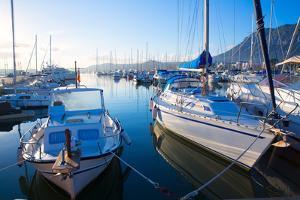 Denia Marina Boats in Alicante Valencia Province of Spain by holbox