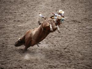 Man Bullriding at Cheyenne Frontier Days Rodeo, Cheyenne, Wyoming by Holger Leue