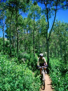 Ranger on Mountain Bike, Steamboat Springs, Colorado by Holger Leue