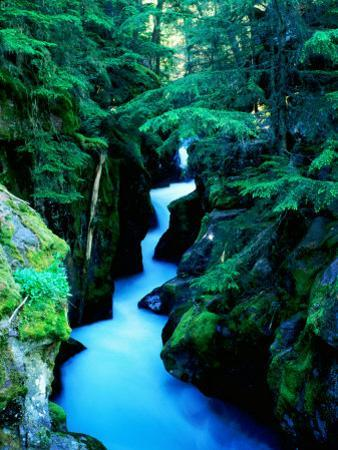 Water Rushing through Avalanche Creek Gorge, Glacier National Park, Montana