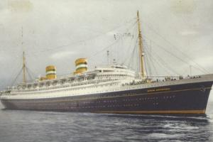 Holland America Line Liner Ss Nieuw Amsterdam