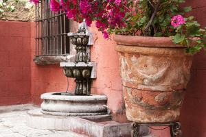 Mexico, San Miguel de Allende, courtyard in San Miguel de Allende by Hollice Looney