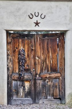 USA, Arizona, Tucson, Door in Tucson by Hollice Looney