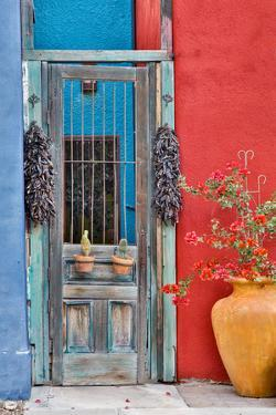 USA, Arizona, Tucson, Weathered Door by Hollice Looney