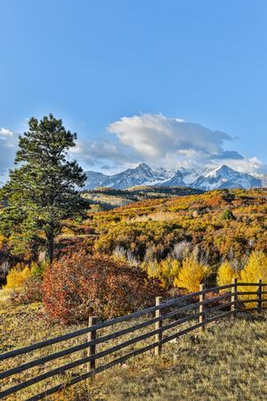 USA, Colorado, Ridgway. Fence along field of Autumn colors and Aspens in gold