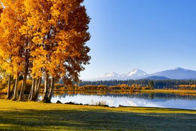 USA, Oregon, Bend, Fall at Black Butte Ranch in Central Oregon by Hollice Looney