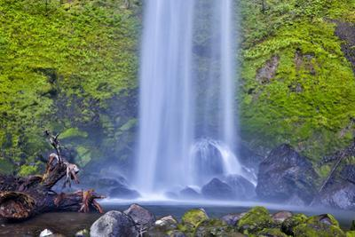 USA, Oregon, Columbia River Gorge, Elwha Falls cascading on the rocks by Hollice Looney