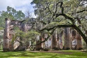 USA, South Carolina, Yemassee, Old Sheldon Church Ruins by Hollice Looney