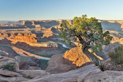 USA, Utah, Moab. Dead Horse State Park, Dead Horse Point in early morning