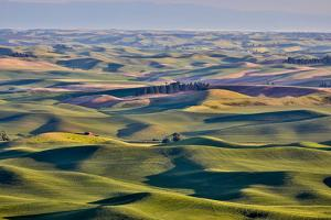 USA, Washington State, Palouse. View from Steptoe Butte. by Hollice Looney