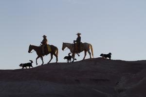 USA, Wyoming, Shell, The Hideout Ranch, Cowboys, Horses and Dogs in Early Light by Hollice Looney