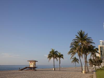https://imgc.allpostersimages.com/img/posters/hollywood-beach-florida-usa_u-L-PFO1650.jpg?p=0