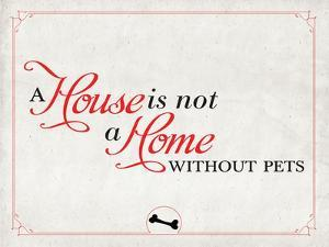 Home without Pets