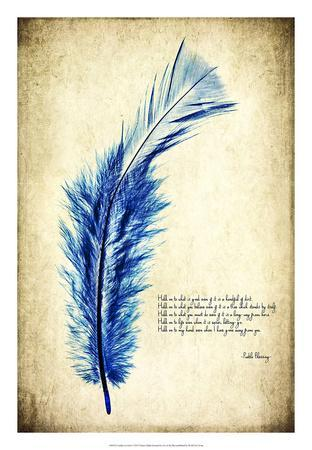 Feather in Color I