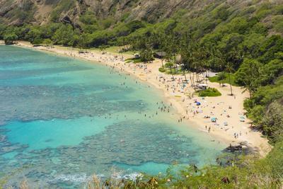 https://imgc.allpostersimages.com/img/posters/honolulu-hawaii-oahu-reef-at-hanauma-bay-coral-from-above-snorkelers-beach_u-L-Q1D0NXX0.jpg?artPerspective=n