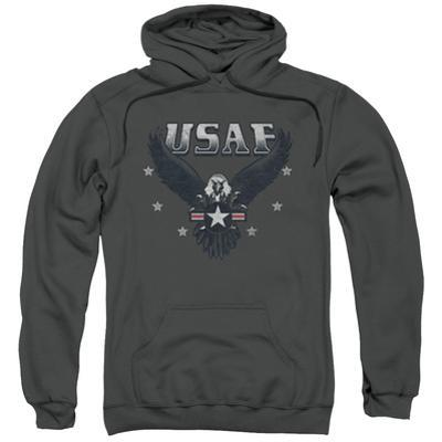 Hoodie: Air Force- Streaking Eagle Shield