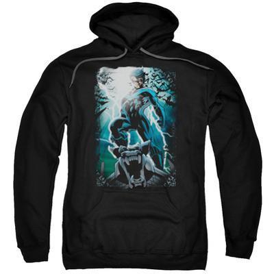 Hoodie: Knightwing- Gargoyle Pose