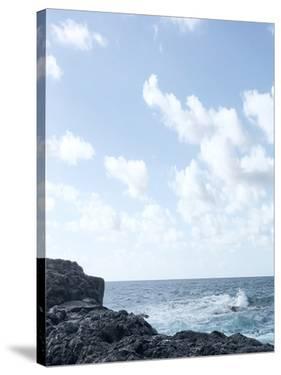 Coastal Living I by Hope Bainbridge