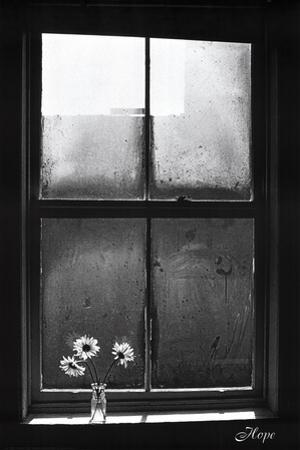 Hope (Window with Flowers)