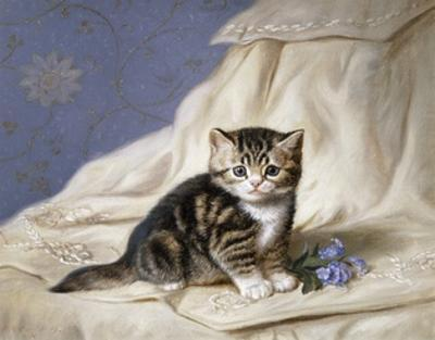 Forget-Me-Not by Horatio Henri Couldery